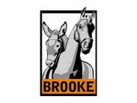 St. Brooke Hospital for Animals