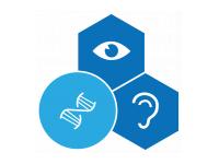 Stichting Wetenschappelijk Onderzoek Doofblindheid