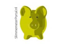 slimmemeterportal.nl | EnergyAlert b.v.