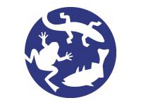 Stichting Reptielen Amfibieën Vissen Onderzoek Nederland (RAVON)